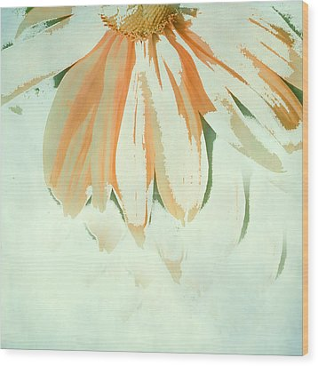 Reconstructed Flower No.1 Wood Print by Bonnie Bruno