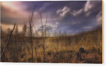Wood Print featuring the photograph Recovery by Ellen Heaverlo