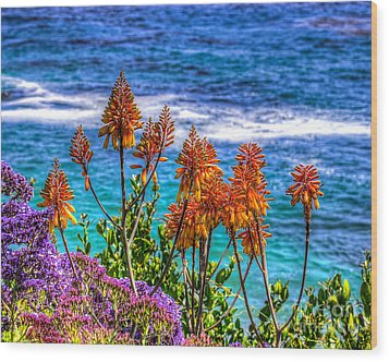 Red Aloe By The Pacific Wood Print by Jim Carrell