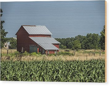 Red Amish Barn And Corn Fields Wood Print by Kathy Clark