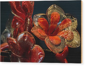 Wood Print featuring the photograph Red And Gold by Glenn DiPaola