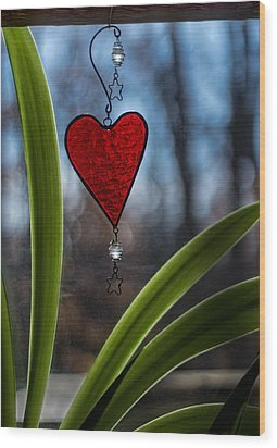 Red And Green Wood Print by Wayne Meyer