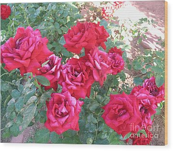 Red And Pink Roses Wood Print