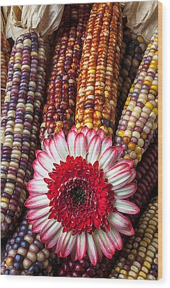 Red And White Mum With Indian Corn Wood Print by Garry Gay