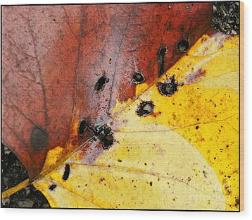 Red And Yellow Wood Print
