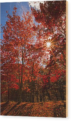 Wood Print featuring the photograph Red Autumn Leaves by Jerry Cowart