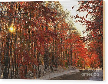 Red Autumn Road In Snow Wood Print by Terri Gostola