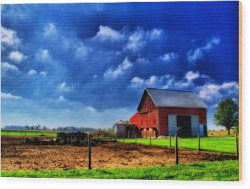 Red Barn And Cows In Ohio Wood Print by Dan Sproul