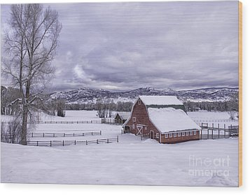 Wood Print featuring the photograph Red Barn At Lamb Ranch by Kristal Kraft
