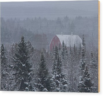 Red Barn In Maine Wood Print by Jack Zievis