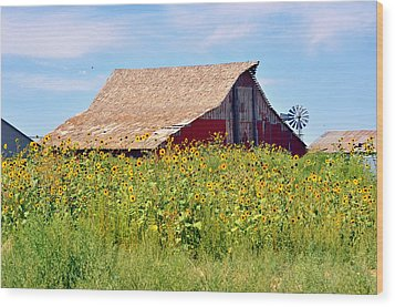 Red Barn In Summer Wood Print