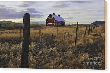 Red Barn In The Golden Field Wood Print