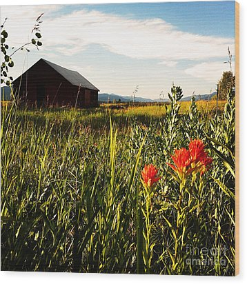 Wood Print featuring the photograph Red Barn by Meghan at FireBonnet Art