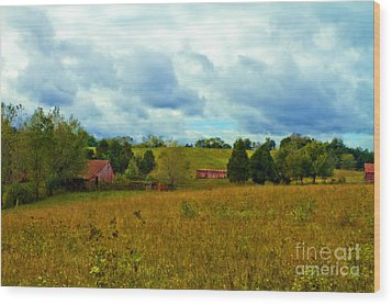 Red Barn Six Wood Print