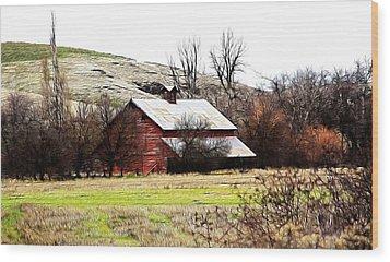 Red Barn Wood Print by Steve McKinzie