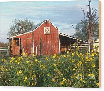 Red Barn With Wild Sunflowers Wood Print