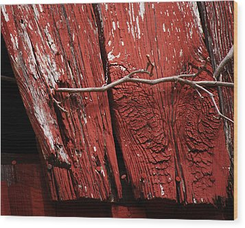 Wood Print featuring the photograph Red Barn Wood With Dried Vine by Rebecca Sherman