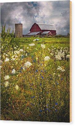 Red Barns In The Wildflowers Wood Print by Debra and Dave Vanderlaan