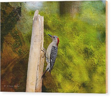 Red-bellied Woodpecker Happily Pecks Wood Print
