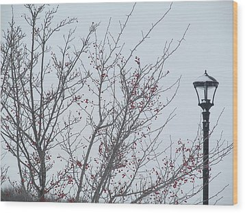 Red Berries And Lamppost Wood Print by Tina M Wenger