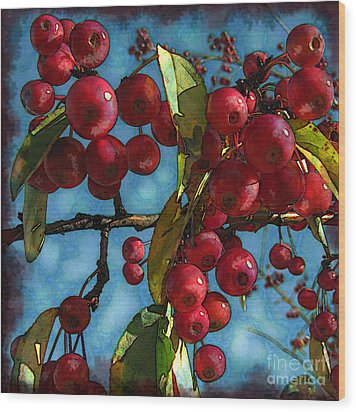 Red Berries Wood Print by Colleen Kammerer