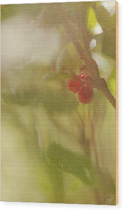 Red Berries Of The Bog Cranberry Wood Print by Roberta Murray