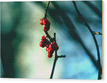 Red Berries On Canvas Wood Print by Cara Moulds