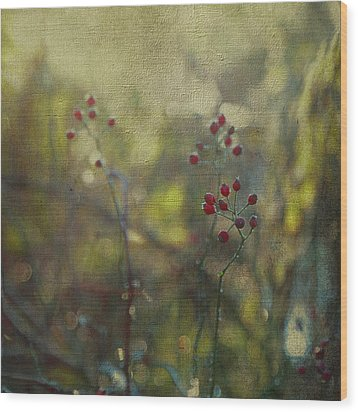 Red Berries On Green After Frost Wood Print