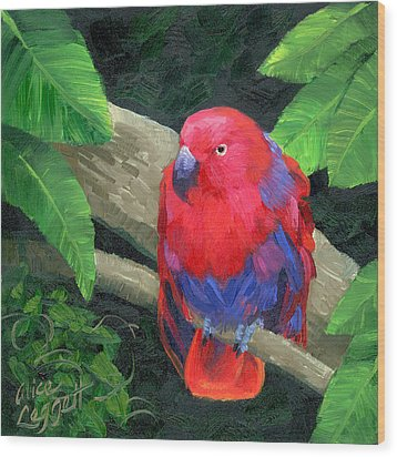 Red Bird Wood Print by Alice Leggett