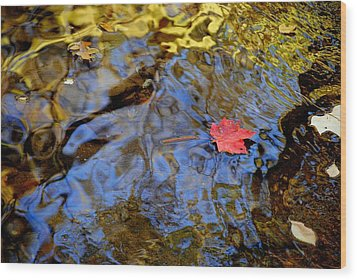 Red Blue And Gold Wood Print by Frozen in Time Fine Art Photography
