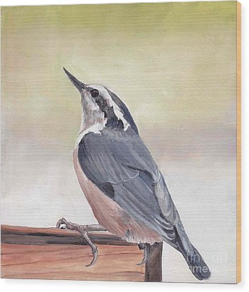Red Breasted Nuthatch Wood Print by Charlotte Yealey