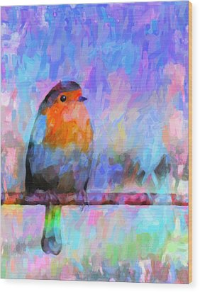 Red Breasted Robin Wood Print by Kenny Francis