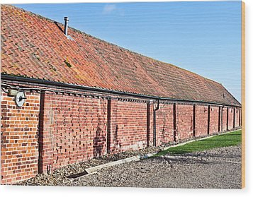 Red Brick Bard Wood Print by Tom Gowanlock