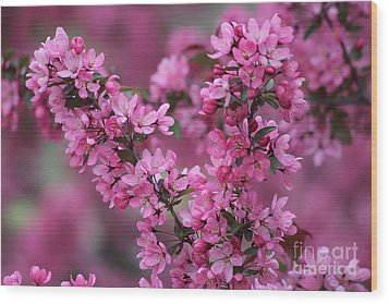 Red Bud Blossoms Wood Print by Theresa Willingham