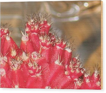 Red Cactus Wood Print by Anais DelaVega