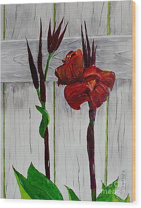 Wood Print featuring the painting Red Canna Lily by Melvin Turner