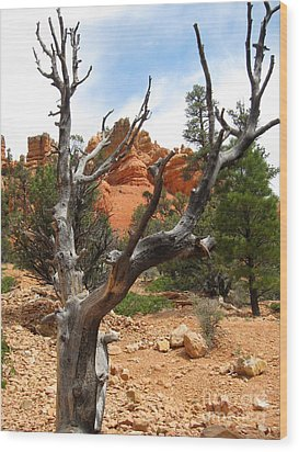 Red Canyon Tree And Rocks Wood Print
