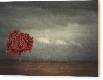 Red Carpet Thunder Wood Print
