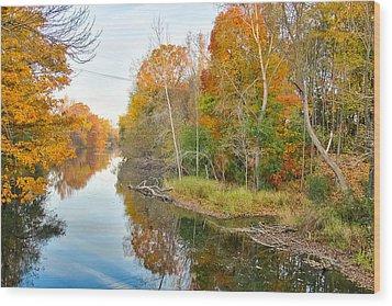 Red Cedar Fall Colors Wood Print by Lars Lentz
