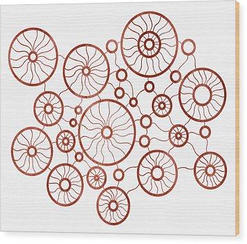 Red Circles Wood Print by Frank Tschakert