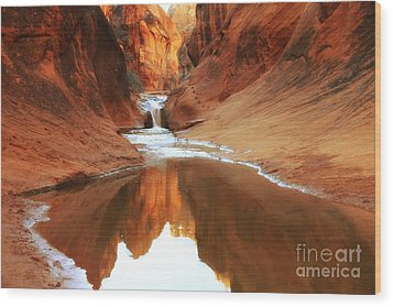 Red Cliffs Symphony Wood Print