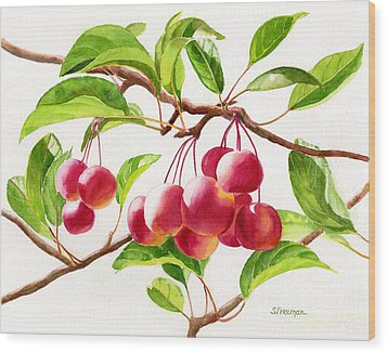 Red Crab Apples Wood Print by Sharon Freeman
