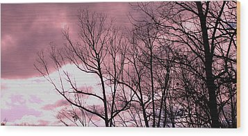 Wood Print featuring the photograph Red Dawn by Candice Trimble