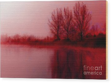 Wood Print featuring the photograph Red Dawn by Julie Lueders