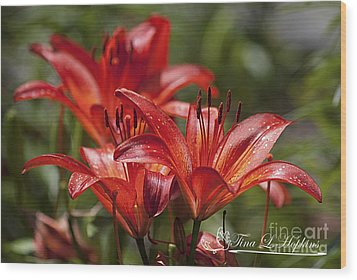 Red Day Lily 20120615_64a Wood Print