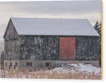 Red Door Barn Wood Print