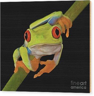 Red Eye Tree Frog Wood Print by Susan Candelario
