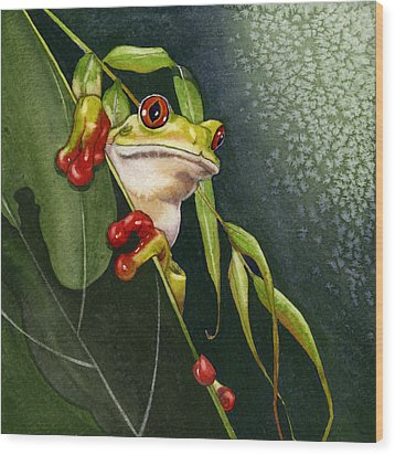 Red-eyed Frog Wood Print by Lyse Anthony