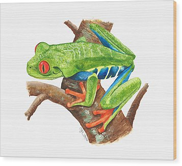 Red-eyed Treefrog Wood Print by Cindy Hitchcock