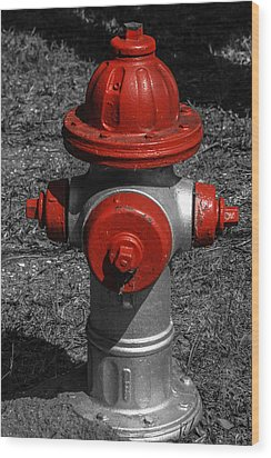 Red Fire Hydrant Wood Print by Steven  Taylor
